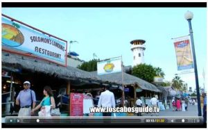videos-los-cabos-guide-tv-2